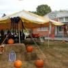 Pumpkins decorated while Norwalk Masons host public